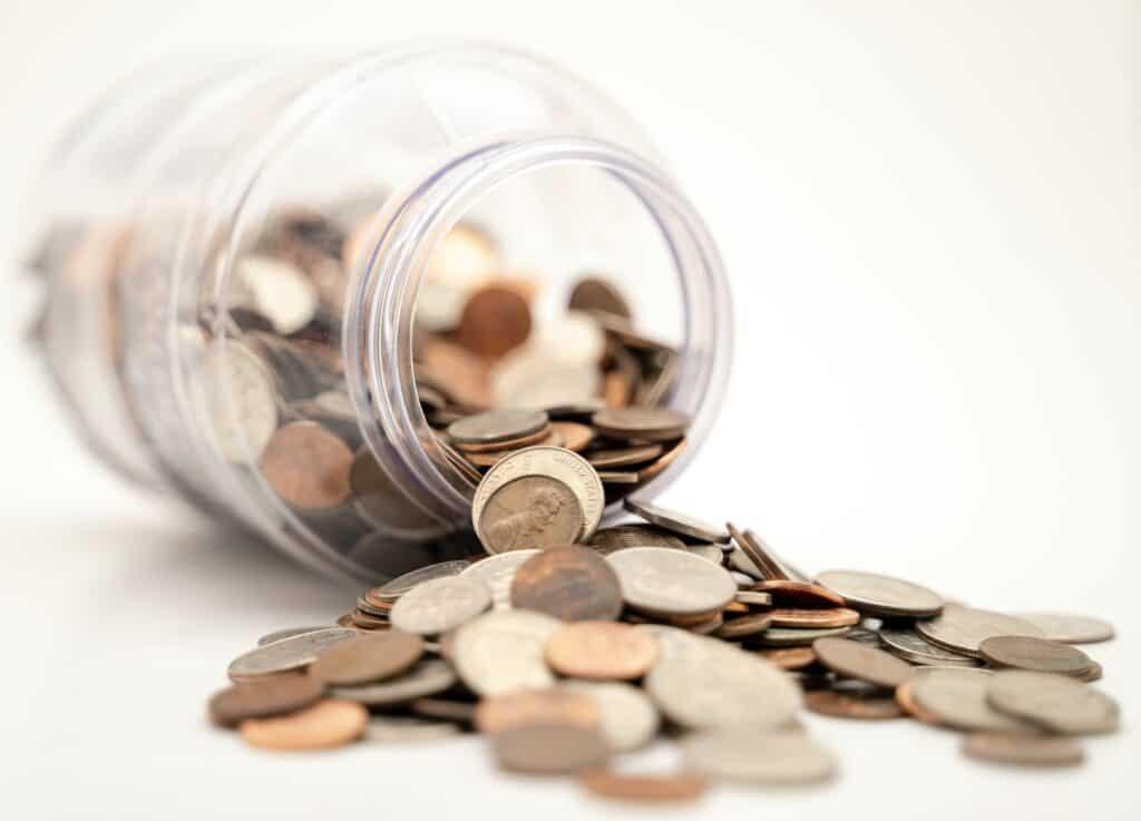 professional organizer is duur